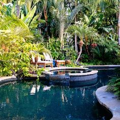 Pool Tropical Landscaping Ideas best pool plants | in this swimming pool landscape bananas team up