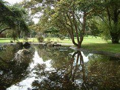 Fotos de Jardin Botanico Jose Celestino Mutis: Dale un vistazo a 702 fotos auténticas de Jardin Botanico Jose Celestino Mutis tomadas por miembros de TripAdvisor en Bogotá, Colombia.
