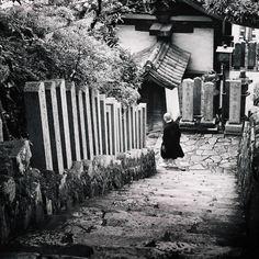 """Nature does not hurry, yet everything is accomplished."" ~Lao Tzu   Photo from Abduzeedo Design's Beautiful Japan"