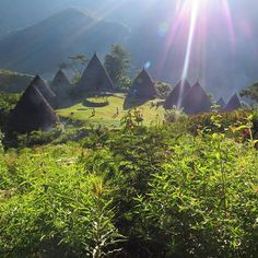 WEBSTA @ kakabantrip - Wae Rebo is an old Manggarian Village, situated in pleasant, isolated mountain scenary..Next flores…
