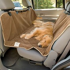 dog hammock carseat-need