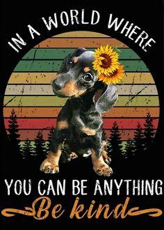 Dachshund Love, Dachshunds, Pets, Movie Posters, Movies, Animals, Beautiful, Dachshund, Animales