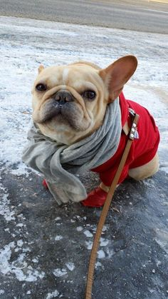 "Q: ""How do you look so cool all the time?"" 