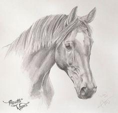 """Sam"" | KWPN | Horse Portrait. Graphite on paper. Portrait on commission by Equine Artist Mirelle Vegers. #equine #art #artwork"