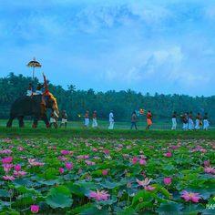 Festival season in Kerala