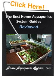 The use of aquaponics grow media is one way that aquaponic gardening differs from traditional methods. Here are a few types with their pros and cons.