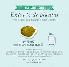 Repelentes caseiros: 5 receitas naturais e poderosas Perfume, Cleaning Hacks, Sweet Home, Tips, Food, Zero, Natural Colon Cleanse, Weekly Cleaning, House Cleaning Tips