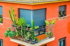 Improvising Home Décor with Beautiful Blinds and Shutters Roller Shutters, Window Shutters, Beautiful Blinds, Keep Bugs Away, Small Laundry Rooms, Guest Bedrooms, Master Bedroom, Bedroom Decor, Protecting Your Home