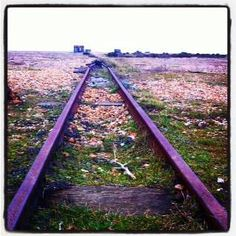 The rails that once brought fish from the Dungeness fleet to the road Romney Marsh, Archaeology, Railroad Tracks, Britain, Past, Old Things, English, Kid, Memories