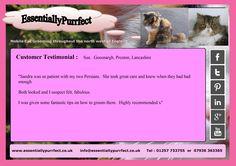 Customer Testimonial of EssentiallyPurrfect #mobile #cat #catgrooming service. Sue #Preston #Lancashire