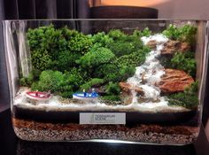 Bonsai Terrarium For Landscaping Miniature Inside The Jars 71