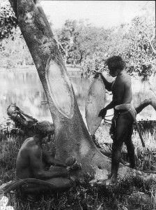 5 Facts about the Aboriginal Heritage Site: a Scarred Tree Aboriginal Education, Aboriginal Culture, Aboriginal People, Aboriginal Art, Aboriginal Symbols, Aboriginal Language, Indigenous Education, Australian Aboriginal History, Australian Aboriginals