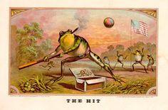 The Hit Cigar box label frog vintage ephemera
