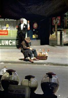 Saul Leiter photographe célèbre