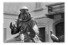 Statua di San Francesco a Vigevano