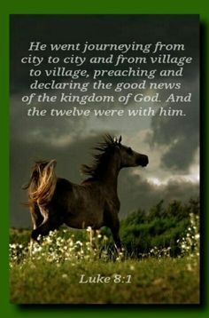 Luke And it came to pass afterward, that he went throughout every city and village, preaching and shewing the glad tidings of the kingdom of God: and the twelve were with him Faith Without Works, Luke 8, Matthew 24 14, Bible Translations, True Faith, Everlasting Life, Bible Truth, Jehovah's Witnesses, The Kingdom Of God