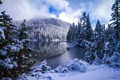Mowich Lake Mount Rainier National Park Washington State USA [OC] [5116x3411]