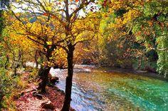 Autumn in Voidomatis river, Epirus region, Greece Greek, Country Roads, Rivers, Lakes, Nature, Recipies, Autumn, Google, Albania
