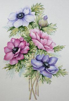 Art Floral, Motif Floral, Botanical Drawings, Botanical Illustration, Botanical Prints, Flower Prints, Flower Art, Watercolor Flowers, Watercolor Art