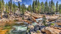Park Narodowy Yosemite, Rzeka Tuolumne River, Stany Zjednoczone, Stan Kalifornia, Drzewa, Kamienie, Skały