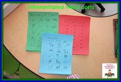 Word Study - Word Sort Writing  in Kindergarten at PreK+K Sharing
