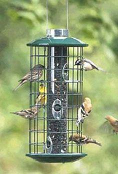 Greatest Bird Feeders - Metal Sunflower Haven Feeder $96.90