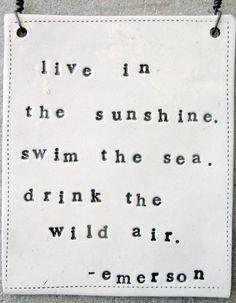 live in the sunshine, swim the sea, drink the wild air. emerson quote.