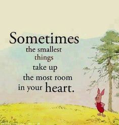 Sometimes, The Smallest Things Take Up The Most Room In Your Heart