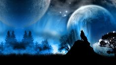 Silhouette photo of howling wolf wallpaper, animals, fantasy art, night