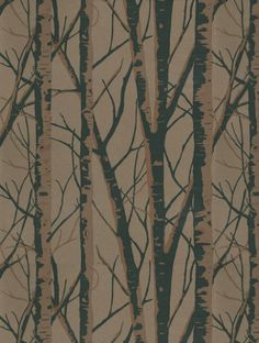 Birch (1904/125), a feature wallpaper from Prestigious, featured in the Woodland collection.