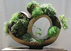 handmade home decorations for growing small plants