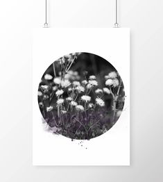 Art Print Dublin Thistle by FireflyDesignsArt on Etsy Dublin Street, Urban Nature, Nature Collection, Watercolor, Art Prints, Inspiration, Etsy, Pen And Wash, Art Impressions