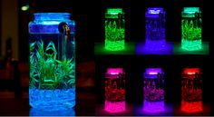 Truly self-cleaning, NoClean betta fish tank. Multi-Color LED Lighting & Remote Controls