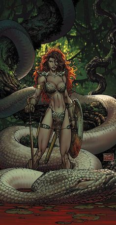Red Sonja by Michael Turner, the colours he uses are all natural colours that you would find in a forest, i like this because all though it looks animated it looks realistic