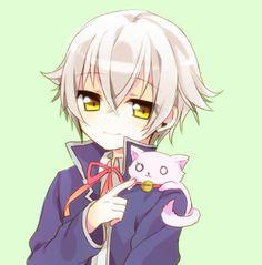 K-project _ shiro & neko K Project Shiro, Kk Project, K Project Anime, Anime Neko, Kawaii Anime, Anime Guys, Anime Art, Missing Kings, Queen Anime