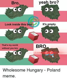 Meme, Memes, and World: Bro, veah bro? Look inside this box It's empty. That's my world without you bro. Poland Hetalia, Hahaha Hahaha, Bro Meme, Meme Meme, Polish Memes, History Memes, Me Too Meme, Me Me Me Anime, My World