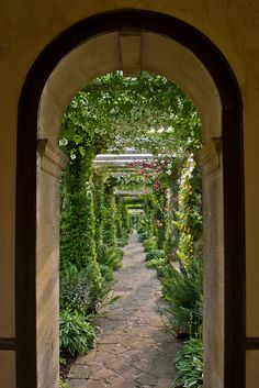 The stunning 300ft Edwardian Pergola at West Dean Gardens, as viewed from the gazebo.