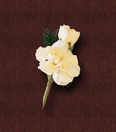 "Miniature White Carnation Boutonniere.   Item # HEF-BT17.       White miniature carnations and buds are set off by a bit of ming fern. A boutonniere of white miniature carnation blossom and bud with ming fern. Approx. 1-1/2"" W x 2"" H."