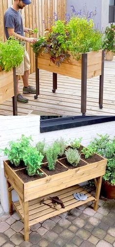 Detailed guide on how to build raised bed gardens! Lots of tips and ideas on bes… Detailed guide on how to build raised bed gardens! Lots of tips and ideas on best designs, soil, and materials for productive & beautiful DIY raised beds! A Piece of Rainbow Building Raised Garden Beds, Raised Herb Garden, Raised Gardens, Building Garden Boxes, Small Garden Raised Beds, Small Beds, Raised Garden Bed Plans, Garden Planters, Outdoor Planters