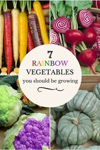 7 Delicious Rainbow-Hued Vegetables You Should Be Growing   eBay