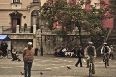 City life VIII