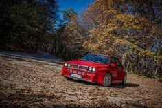 Lancia Delta on mechanical steroids.