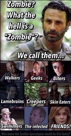The Walking Dead Memes that live on after the characters and season ended. Memes are the REAL zombies of the show. Walking Dead Funny, Walking Dead Zombies, Carl The Walking Dead, The Walk Dead, Walking Dead Quotes, Walking Dead Coral, Twd Memes, Memes Humor, Film Serie