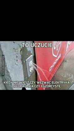 Wtf Funny, Funny Jokes, Why Are You Laughing, Polish Memes, Take A Smile, Health Memes, Dog Jokes, Nasa, Funny Mems