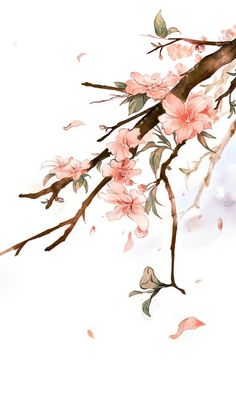 Elegant Beautiful Flowers Painting Soft For iPhone 6 7 Plus Flower Wallpaper, Wallpaper Backgrounds, Wallpaper Desktop, Watercolor Flowers, Watercolor Art, Floral Iphone Case, China Art, Cute Wallpapers, Iphone Wallpapers