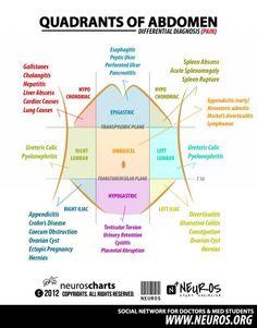 Quadrants of abdomen