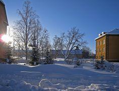 Campus Östersund   Roine Johansson