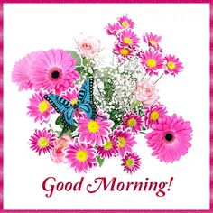 Good Morning Gif, Good Morning Flowers, Good Morning Greetings, Good Morning Wishes, Good Morning Images, Evening Pictures, Good Night Love Images, Morning Board, Happy Sunday