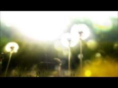 PROGRESSIVE MUSKELENTSPANNUNG * NACH JACOBSON * mit 7 Muskelgruppen - YouTube Yoga Meditation, Yin Yoga, Stress Management, Ayurveda Yoga, Alternative Medicine, Asana, Relax, Youtube, Health