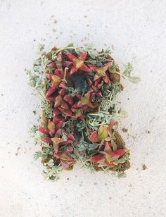 #DIYWedding Craft: Floral Monograms >> http://www.hgtvgardens.com/weddings/diy-his-and-her-floral-monogram?soc=pinterest